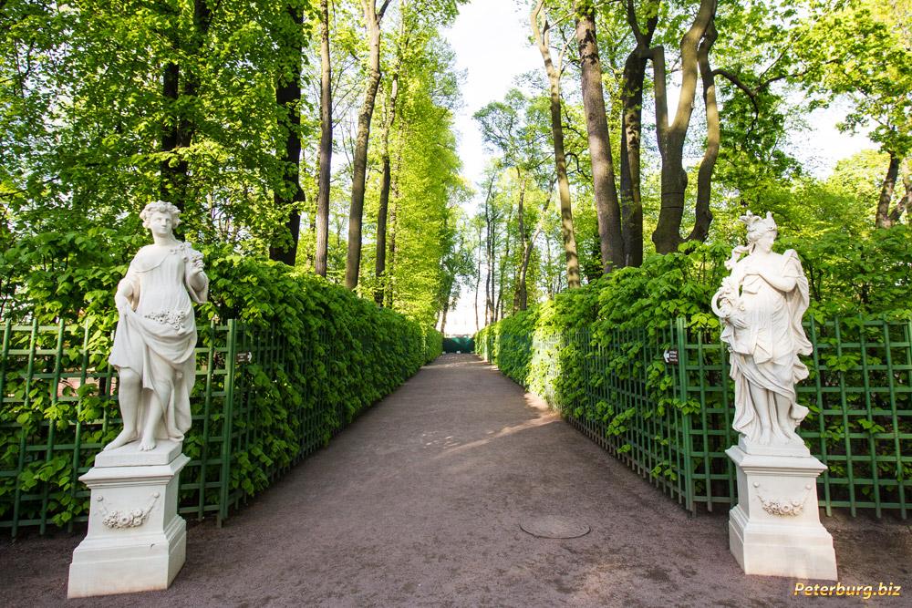 летний сад фото в санкт петербурге