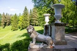 Львы в пригородах Санкт-Петербурга