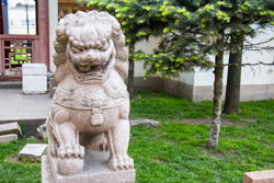 Львы в китайском дворике в Санкт-Петербурге