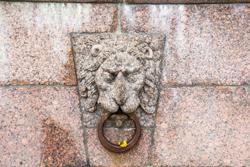 Львы Петербурга на Стрелке Васильевского острова