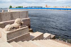 Маршрут прогулки Львы Петербурга