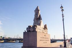Египетские сфинксы в Санкт-Петербурге
