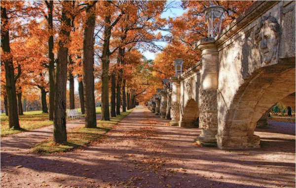 картинки осень в санкт-петербурге
