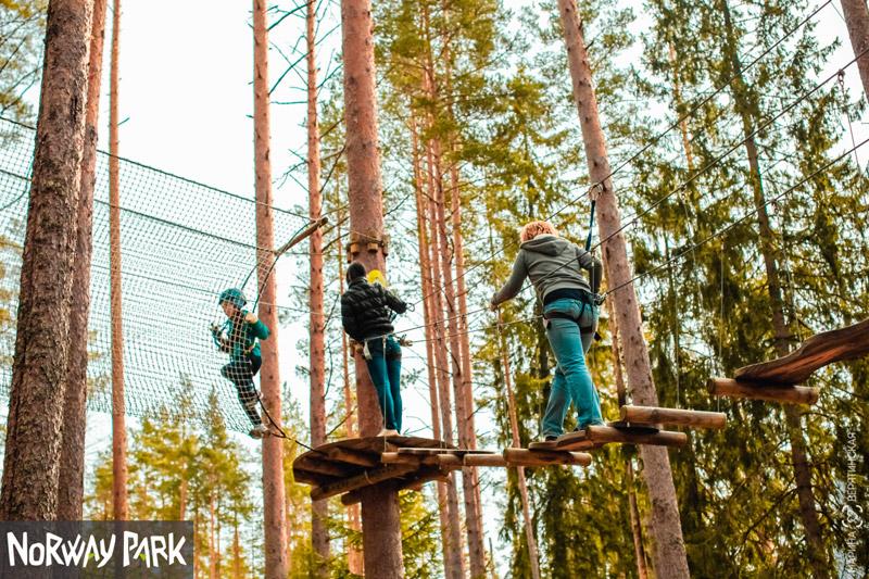 Норвежский веревочный парк «Орех» в Санкт-Петербурге - описание ... 3698c3d1979