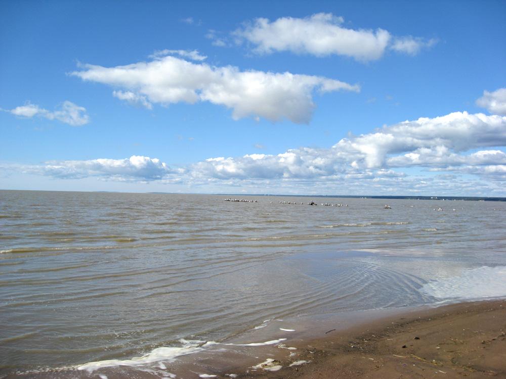 Картинки фото природы балтийское море