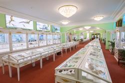 Горный музей Санкт-Петербурга